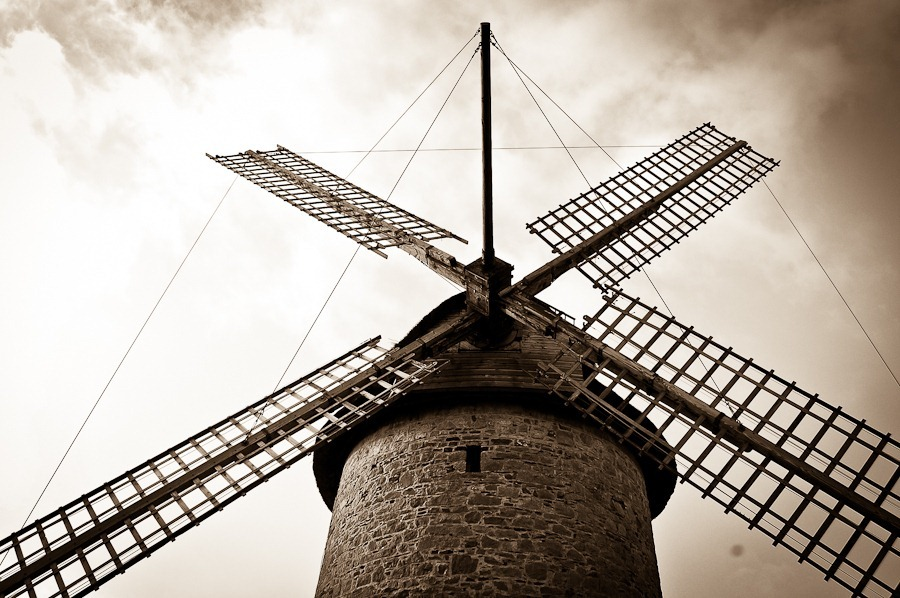 Skerries-Windmill-GardenGroup-18